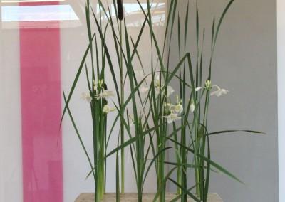 florales001