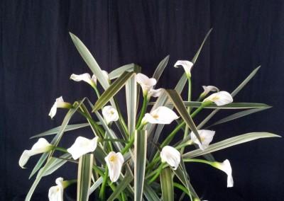 florales003